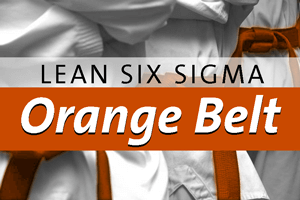 Orange Belt in Lean